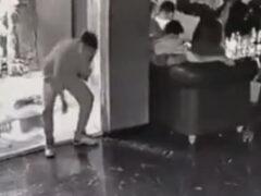 Невнимательный незнакомец искупался в аквариуме