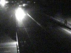 Бигфут на обочине шоссе напугал водителя