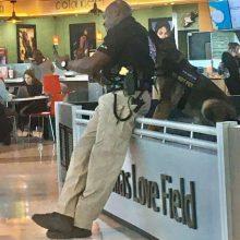 Полицейский не только сделал селфи со своей собакой, но и показал людям результат съёмки