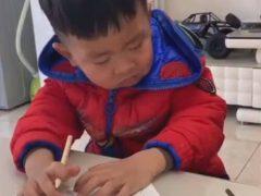 Учёба оказалась для мальчика слишком утомительным занятием