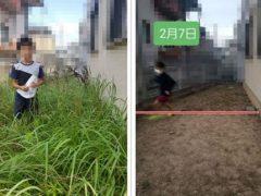 Маленький исследователь вытоптал сорняки на заднем дворе