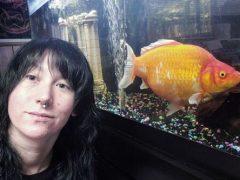 Обычная золотая рыбка превратилась в монстра-переростка