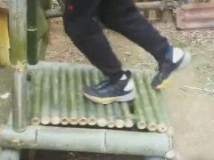 Для того, чтобы оставаться в хорошей форме, достаточно запастись бамбуком