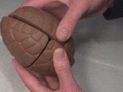 Шоколадное яйцо превратилось в сладкую головоломку