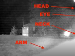 Светящийся инопланетянин прогулялся на заднем дворе, а после улетел