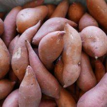 Заказав килограмм сладкого картофеля, женщина получила всего один гигантский экземпляр