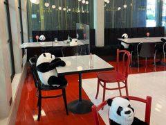 Сотрудники ресторана рассадили за столиками игрушечных панд