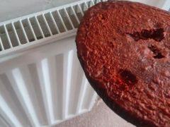 Отец семейства испёк слишком твёрдое пирожное