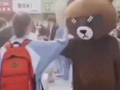 Забавный медведь, встретивший девушку из школы, оказался её матерью