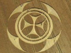 Фермер удивился таинственному символу, появившемуся у него на поле