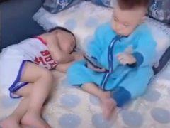 Заботливый маленький добряк укрыл братишку одеялом