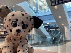 Сотрудники аэропорта вернули мальчику потерянную игрушку