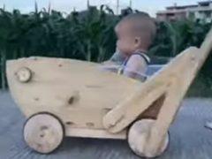 Малыш получил возможность похвастаться оригинальной коляской