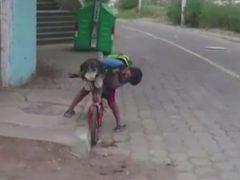 Отправляясь с собакой в поездку на велосипеде, мальчик не забыл о маске для питомицы