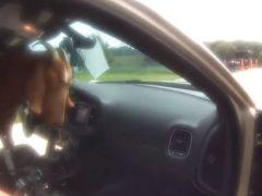 Коза влезла в полицейскую машину и закусила документами