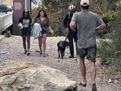Неловкий пёс, упавший с утёса, оказался везучим и практически не пострадал