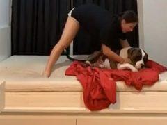 Ленивая собака не сдвинется с места даже в случае необходимости