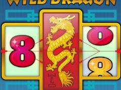 Обзор игрового автомата 88 Wild Dragon