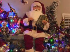 Дом любителя Рождества превратился в волшебную сказку