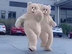 Боссы пригласили в гости комичных медведей, чтобы подчинённые смогли избавиться от стресса