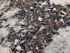 Вместо медового месяца супруги начали убирать мусор с пляжа