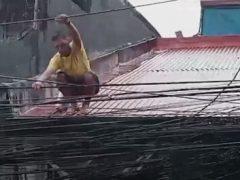 Чтобы добраться до еды, отцу семейства пришлось стать канатоходцем