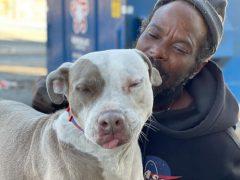 Бездомный бросился спасать животных из загоревшегося приюта