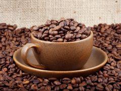 Как правильно выбрать кофе и не прогадать с выбором вкусного напитка