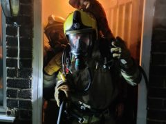 Спасаясь от огня, игуана прыгнула на голову пожарному