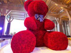 Пожилые супруги полюбовались на рекордного медведя, сделанного из роз