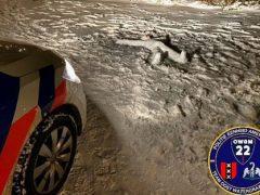 Труп, найденный в парке, оказался всего лишь снеговиком