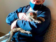 Хозяин удивился, когда нашлась его кошка, пропавшая много лет назад