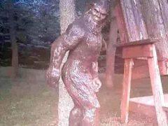 Статуя бигфута стала жертвой похищения