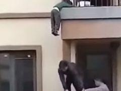 Малыш, свисавший с балкона, не упал благодаря неравнодушному мужчине