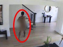 Домовладельцы шокированы вторжением голого злоумышленника