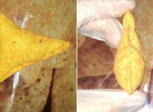 Необычная закуска, найденная в пакете, принесла девочке неплохой доход