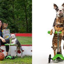 Кошка с собакой прокатились на самокате и установили мировой рекорд
